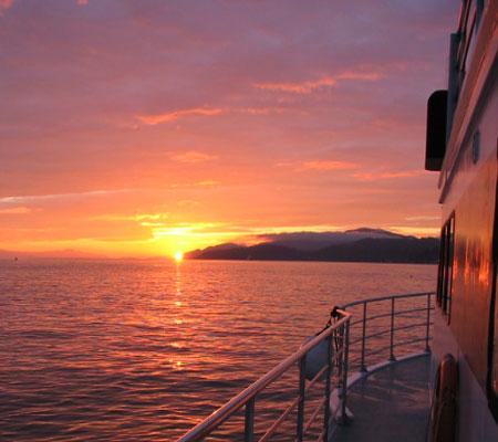 sunset2450x400.jpg
